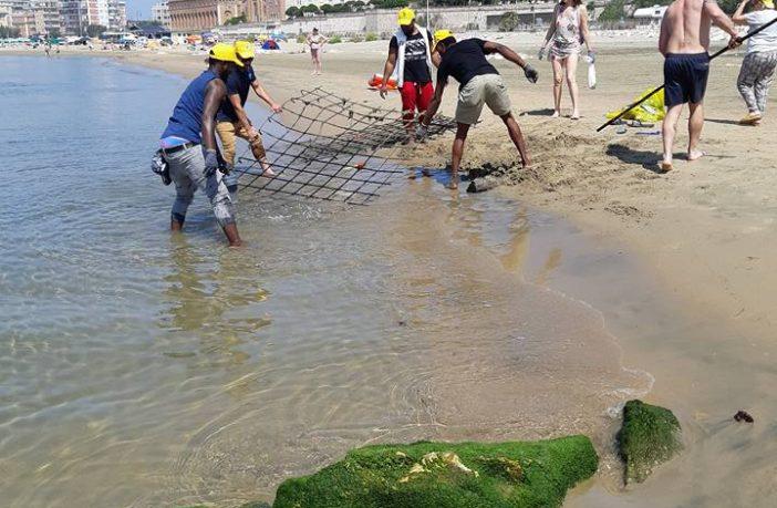 spiagge e fondali puliti