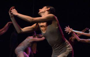 scuola danzatori
