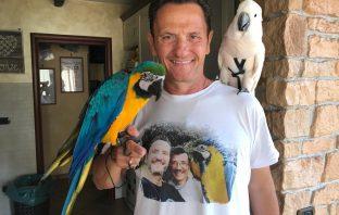 ostia pappagalli