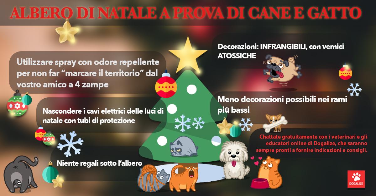 Addobbi Natalizi On Line.Come Fare Gli Addobbi Di Natale Con Cani E Gatti In Casa Viviroma Tv