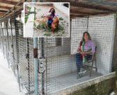 Montefranco (TR) – Sindaca chiusa nel box del canile per protesta