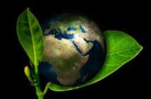 ambientale